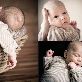 preview: photo session with Leon (5 weeks)